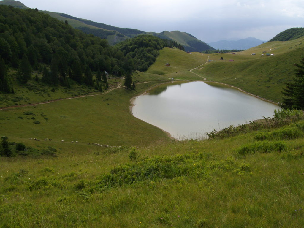 Sisko jezero