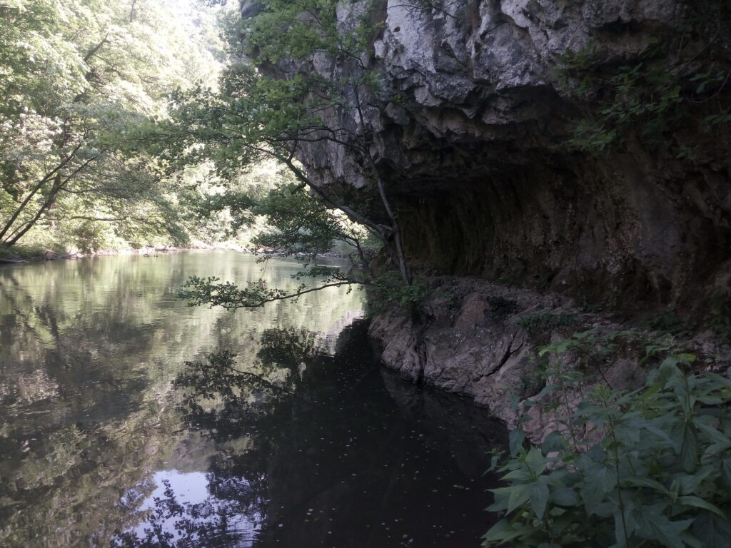 Kanjon Nere